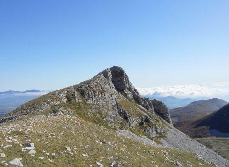 Escursione: Monte Tartaro dal pianoro Campitelli ai Monti Meta