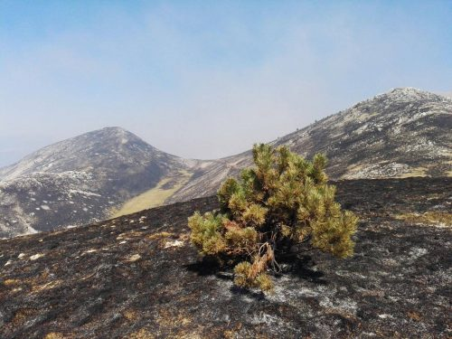 Il Parco Nazionale dellal Majella revoca le autorizzazioni per i fuochi pirotecnici