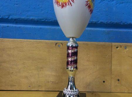 L'Asd Artistica Francavilla raggiunge la finale nazionale della CSEN CUP col 2° posto nella categoria Esordienti