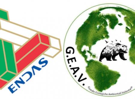 Pescara: accordo fra le Guardie Ecologiche GEAV e l' ENDAS