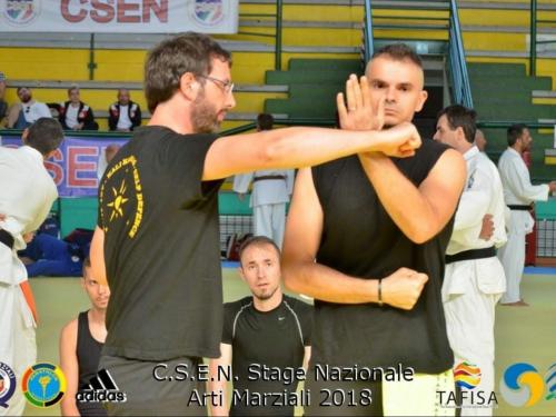 Intervista a Francesco Picaro maestro di arti marziali e psicologo dello sport a Chieti