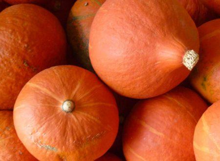 """Stasera la """"Festa della Zucca"""" a Roccascalegna (Today, Pumpkin Party in Roccascalegna)"""